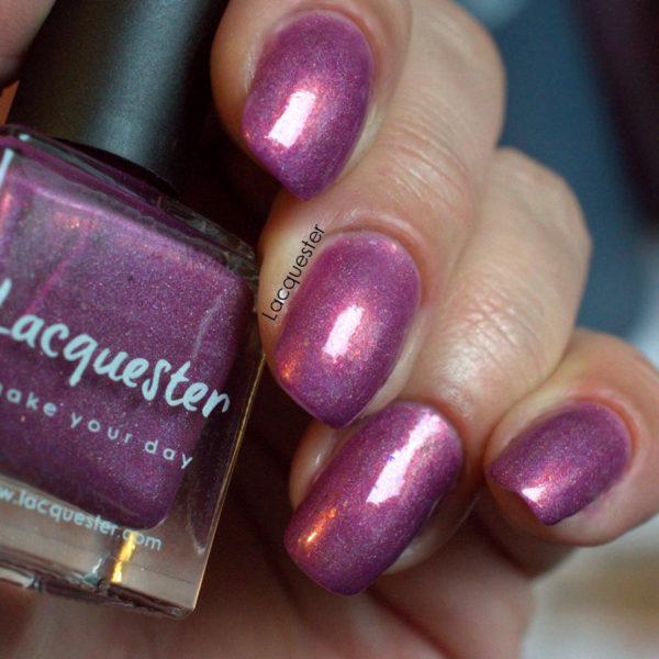 Lacquester - Kotukutuku